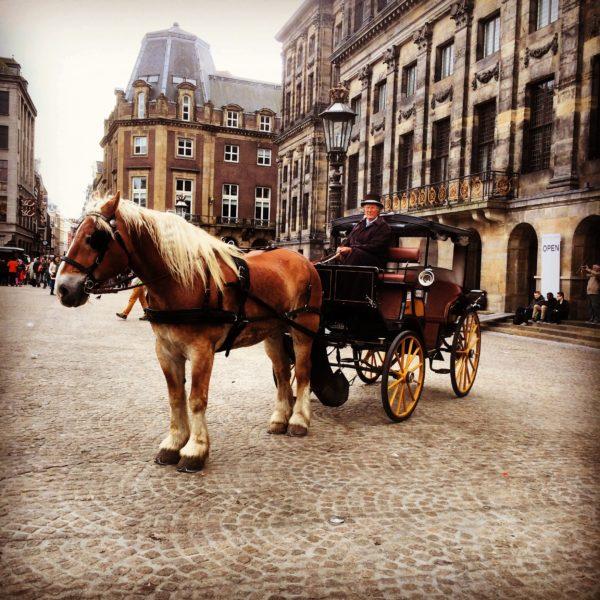 ヨーロッパツアー2015 #14 アムステルダム